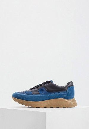 Кроссовки Cerruti 1881. Цвет: синий