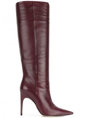 Высокие сапоги с заостренным носком Sergio Rossi. Цвет: розовый и фиолетовый