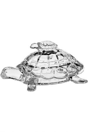 Доза Черепаха, 26,5 см CRYSTAL BOHEMIA. Цвет: прозрачный