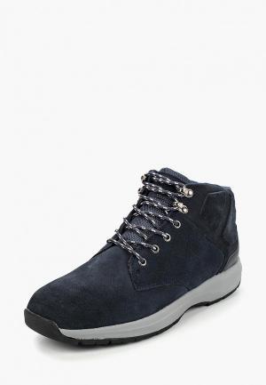 Ботинки LumberJack. Цвет: синий