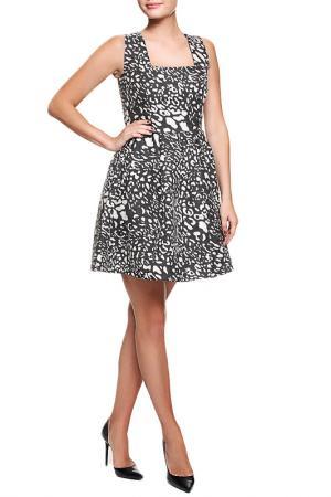 Платье Acasta. Цвет: черный
