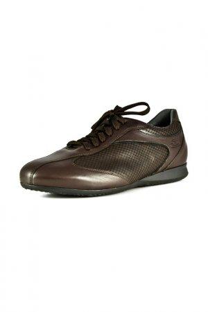 Кроссовки ALBERTO GUARDIANI. Цвет: коричневый