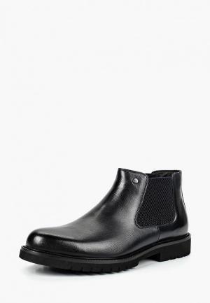 Ботинки Marco Lippi. Цвет: черный