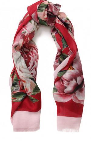 Шаль из смеси кашемира и шелка с цветочным принтом Dolce & Gabbana. Цвет: розовый