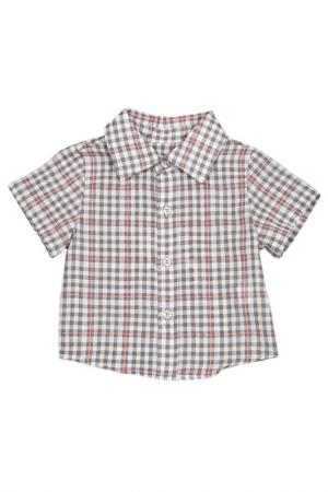 Рубашка Gioia di Mamma. Цвет: серый