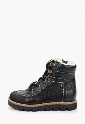 Ботинки Tapiboo. Цвет: черный